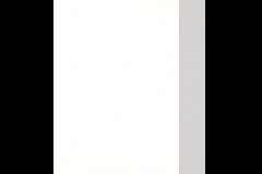 Polaris 8256 - Avonite (F) Fundamentals